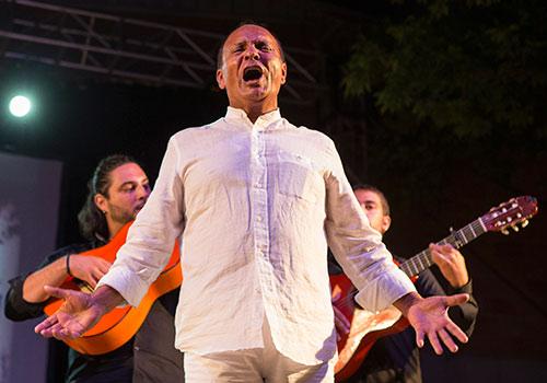 El Pele en su última actuación en la Cata Flamenca de Montilla. Foto: Miguel Valverde.