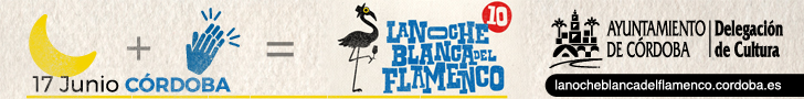 Noche Blanca del Flamenco 2017 - Banner