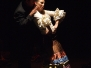 XIV Cordobán Flamenco