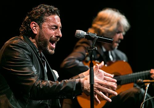 Pedro 'El Granaino' en uno de los momentos del espectáculo 'Meligrana'. Foto: Fundación Cajasol.