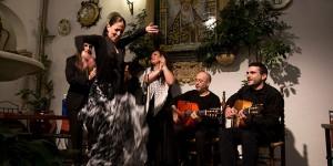 Flamenco en Patio de la Judería @ Restaurante Patio de la Judería | Córdoba | Andalucía | España
