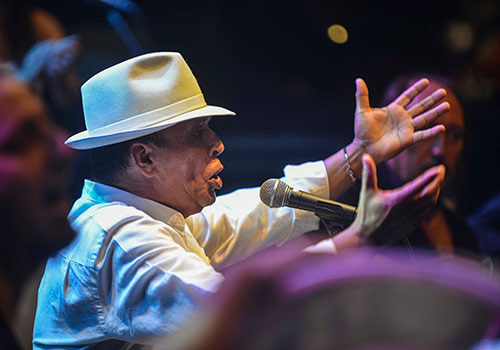 El Pele en uno de los momentos de su actuación en la última Noche Blanca del Flamenco de Córdoba. Foto: Toni Blanco.