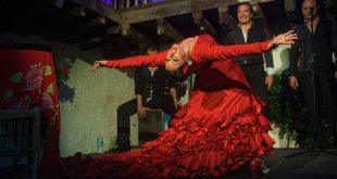 La bailaora Lola Pérez en una actuación en el Centro Flamenco Fosforito. Foto: Toni Blanco.