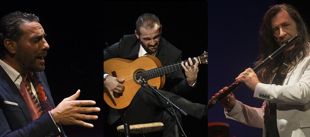 Pedro El Granaíno en la Noche Blanca del Flamenco 2017