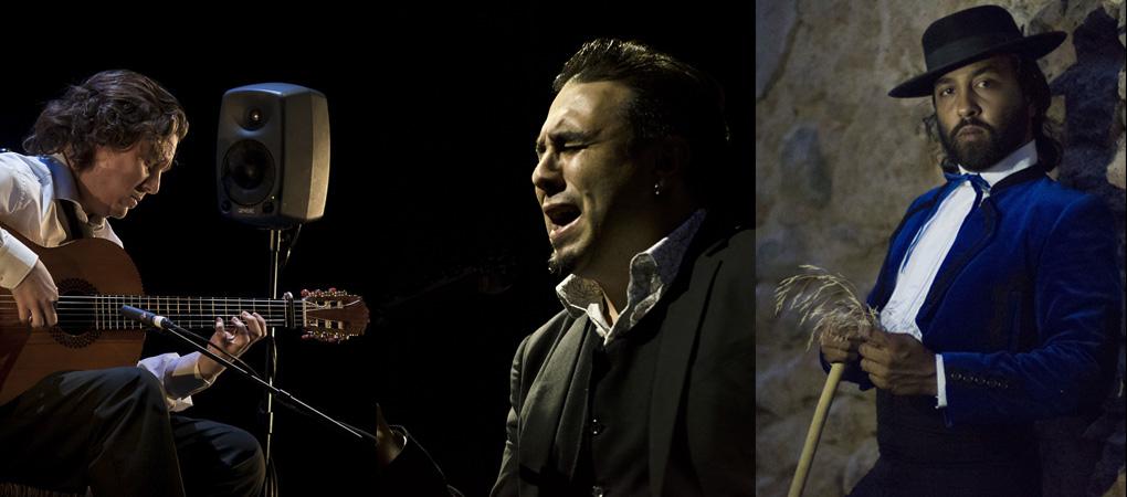 Premios Nacionales de Córdoba en la Noche Blanca del Flamenco 2017.