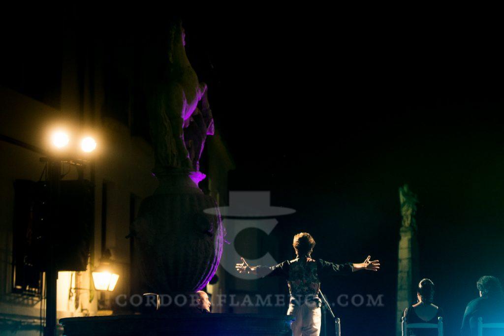 Manuel Lombo. Noche Blanca del Flamenco 2017. Foto: M. Valverde.