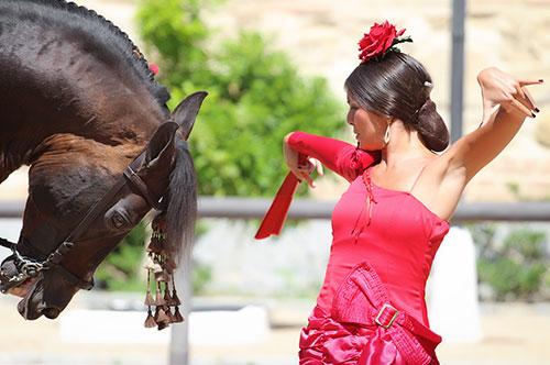 Espectáculo Flamenco y Ecuestre. Pasión y Duende del Caballo Andaluz.