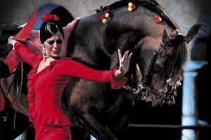 Espectáculo Ecuestre | Pasión y Duende del Caballo Andaluz @ Caballerizas Reales | Córdoba | Andalucía | España