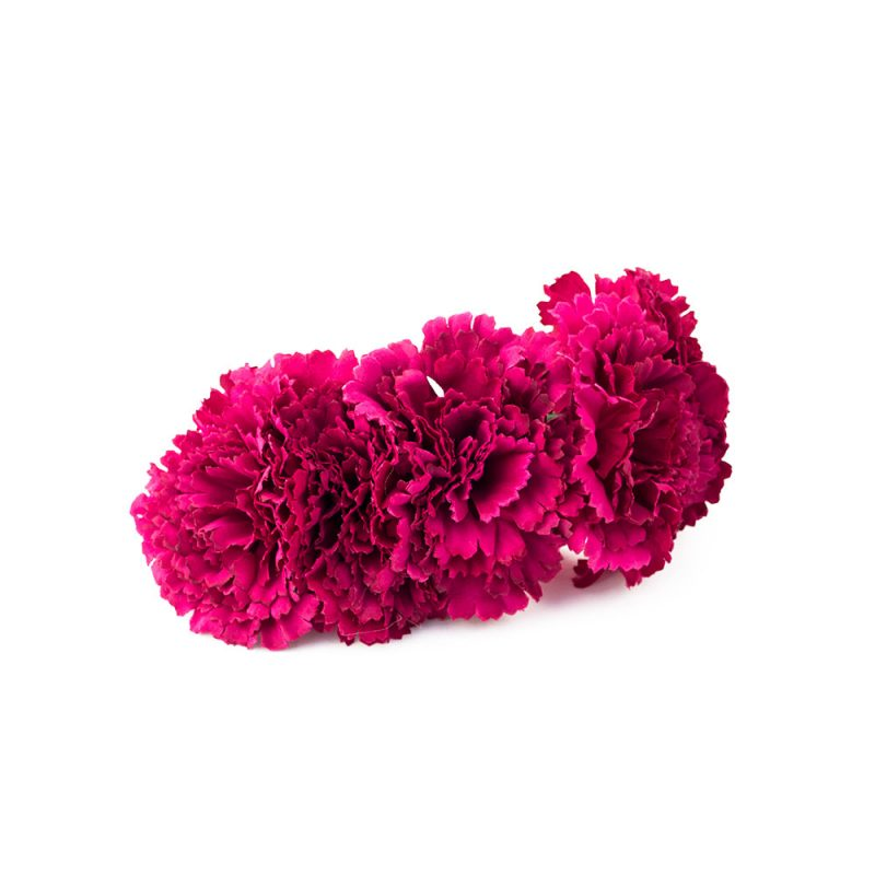 Semicorona de claveles - Complementos de flamenca -Moda Flamenca - Flores de Flamenca - Semicorona de Flores - marbearte - Flores hechas a mano - Complementos de flamenca artesanales
