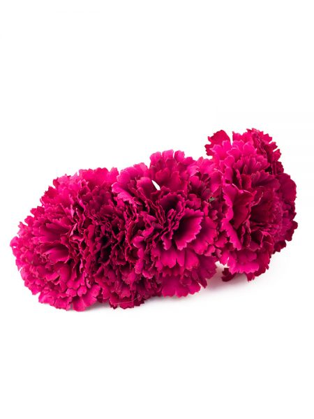 Semicorona de flamenca de claveles - Semicorona de flamenca de flores - Complementos de flamenca de flores - Complementos de flamenca de claveles - Complementos de flamenca hechos a mano - Complementos de flamenca de flores -