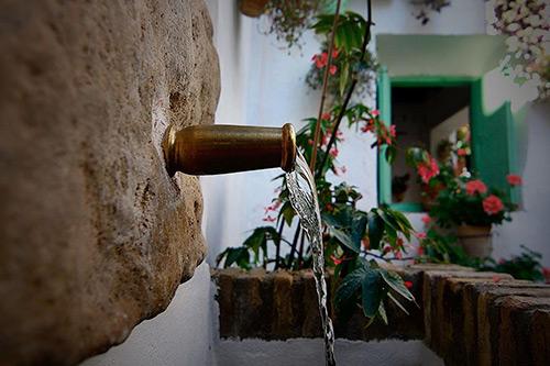 Ruta por los patios de Córdoba - Patios de San Basilio - Patios de Córdoba abiertos todo el año - Mayo Festivo - Patios con flores -