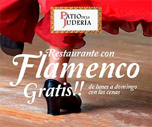 Cena con espectáculo flamenco - Reservar