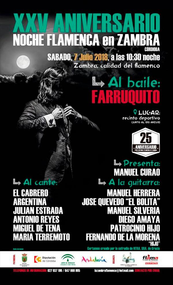 Noche Flamenca de Zambra 2018