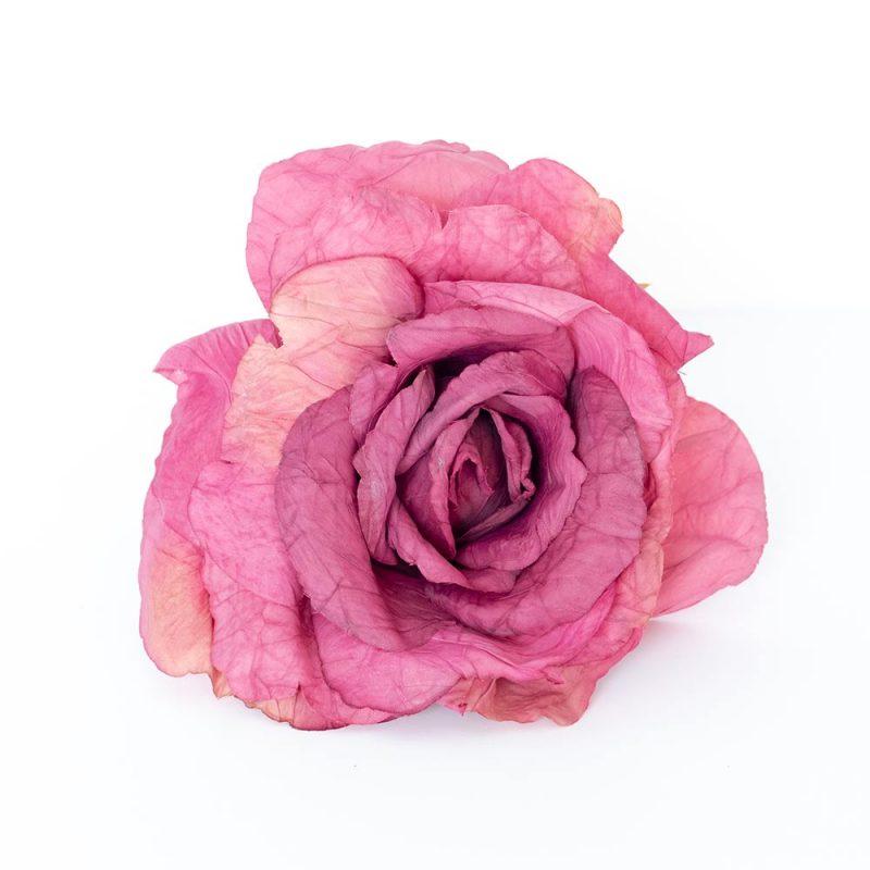 Flores de Flamenca - Flor de flamenca Rosa - Rosa de Tela - Moda Flamenca 2019 - Flores de Flamenca 2019 - Complementos de Flamencas 2019 - Flores de flamencas artesanales - Ramilletes y flores de tela