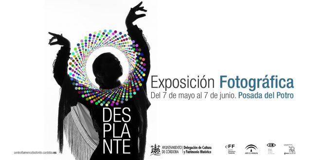 Exposición de Fotografía e Ilustración 'Desplante'. Del 7 de mayo al 7 de junio de 2019. Posada del Potro.