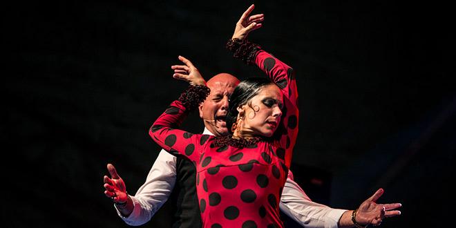 La bailaora Lola Pérez en uno de los momentos de su actuación en el Patio de San Basiliio. Foto: Elena de la Cuesta.