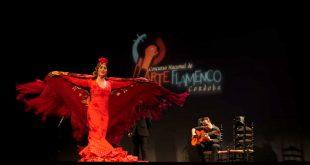 La bailaora Cynthia Cano, en uno de los momentos de su actuación en la fase preliminar del Concurso Nacional de Arte Flamenco de Córdoba 2019. Foto: A. Higuera.