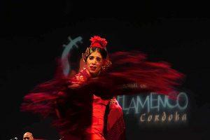 Fase preliminar de la modalidad de Baile del Concurso Nacional de Arte Flamenco de Córdoba. Foto: A. Higuera.