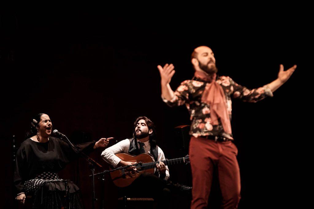 El guitarrista Álvaro Martinete, en uno de los momentos de su actuación en la final del Concurso Nacional de Arte Flamenco de Córdoba. Foto: M.Valverde.